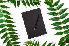 Composición natural con el sketchbook y lápices en la tabla blanca, adornada con las ramas verdes Endecha plana, visión superior, Imagen de archivo libre de regalías