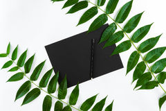 Composición natural con el sketchbook y lápices en la tabla blanca, adornada con las ramas verdes Endecha plana, visión superior, Fotografía de archivo