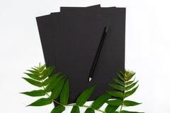 Composición natural con el sketchbook y lápices en la tabla blanca, adornada con las ramas verdes Endecha plana, visión superior, Imágenes de archivo libres de regalías