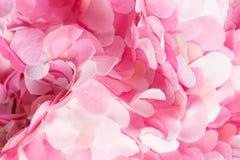 Composición ondulada de los pétalos rosados delicados de la materia textil Fotografía de archivo libre de regalías