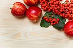 Composición otoñal con las manzanas y la sorba Backgrou de madera Imagen de archivo libre de regalías