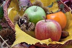 Composición otoñal de la fruta en una cesta Fotos de archivo