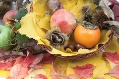 Composición otoñal de la fruta en una cesta Imagenes de archivo