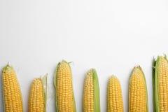 Composición plana de la endecha con las mazorcas de maíz dulce sabrosas foto de archivo