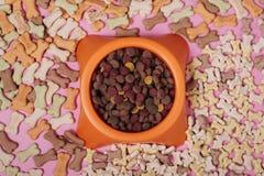 Composición puesta plana con los accesorios para el perro y el gato, comida seca, galletas, galletas, alimento para animales imagen de archivo libre de regalías
