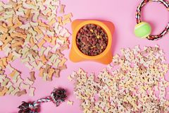 Composición puesta plana con los accesorios para el perro y el gato, juguetes, comida seca, galletas, galletas, alimento para ani foto de archivo