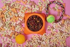 Composición puesta plana con los accesorios para el perro y el gato, juguetes, comida seca, galletas, galletas, alimento para ani fotos de archivo libres de regalías