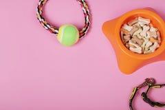 Composición puesta plana con los accesorios para el perro y el gato, juguetes, comida seca, galletas, galletas, cuello en fondo r fotos de archivo libres de regalías