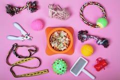 Composición puesta plana con los accesorios para el perro y el gato, juguetes en fondo rosado Animal doméstico care fotografía de archivo libre de regalías