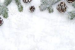 Composición puesta plana del invierno hecha de ramas, de conos y del copo de nieve del abeto en el fondo blanco con el espacio li fotos de archivo