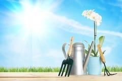 Composición que cultiva un huerto con una flor y diversos utensilios de jardinería Fotos de archivo libres de regalías