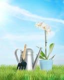 Composición que cultiva un huerto con una flor y una regadera Imágenes de archivo libres de regalías