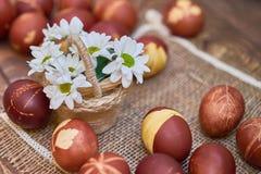 Composición rústica de los huevos de Pascua Fotos de archivo libres de regalías