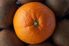 Composición redonda de una naranja y de kiwis en un disco de cerámica decorativo Foto de archivo
