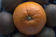 Composición redonda hecha de frutas frescas: naranja y kiwis Foto de archivo