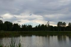 Composici?n de Reed Natural del cielo de Forest Lake Evening fotos de archivo