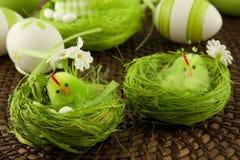 Composición de Pascua con el pollo Fotos de archivo