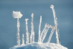 Composição do gelo Fotos de Stock Royalty Free