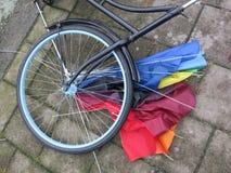 Composistion av eker av ett hjul av en cykel och eker av ett paraply royaltyfria foton