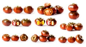 Composite with black tomatoes from Crimea isolated on white back stock image