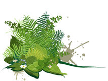 Composite of forest plants vector illustration
