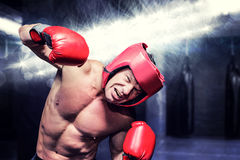 Composite image of aggressive boxer against black background Stock Photography