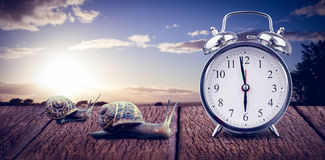 Composite image of alarm clock Stock Image