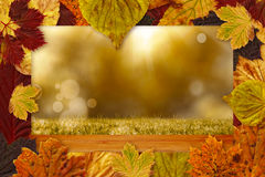 Composite image of autumn leaves pattern. Autumn leaves pattern against bleached wooden planks background Royalty Free Stock Photography