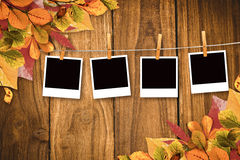 Composite image of autumn leaves pattern Stock Photos