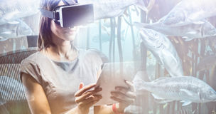 Composite image of big fish swimming in a tank. Big fish swimming in a tank against businesswoman looking her tablet while using a virtual glasses stock image