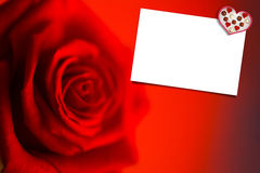 Composite image of blurred red rose Royalty Free Stock Image