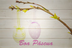 Composite image of boa pascua Royalty Free Stock Photo