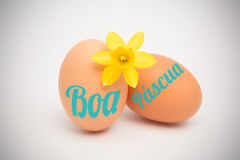 A Composite image of boa pascua Royalty Free Stock Photo