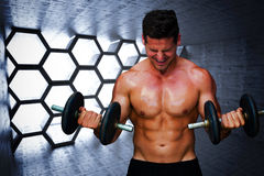Composite image of bodybuilder lifting dumbbells Stock Image