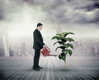 Composite image of businessman holding red watering can Stock Image