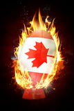 Composite image of canada rugby ball Stock Images