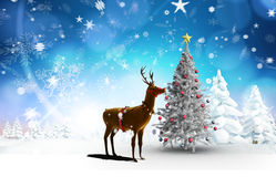 Composite image of christmas tree and reindeer Royalty Free Stock Photos