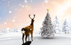 Composite image of christmas tree and reindeer Royalty Free Stock Images