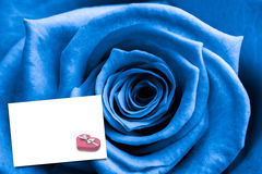 Composite image of close up of blue rose Stock Photography