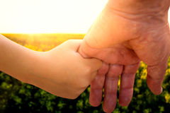 Composite image of close up of father holding his daughter hand. Close up of father holding his daughter hand against scenic view of beautiful mustard field Royalty Free Stock Photo