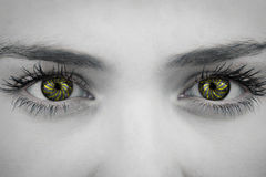 Composite image of close up of female blue eyes Royalty Free Stock Photo