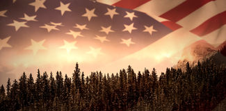 Composite image of close up of the us flag. Close up of the us flag against pine trees in forest stock photos
