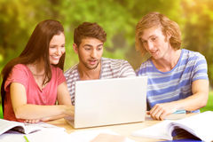 Composite image of college students using laptop in library. College students using laptop in library against trees and meadow Stock Photos