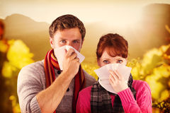 Composite image of couple blowing noses into tissues. Couple blowing noses into tissues against greenness field of grapevine Stock Photos