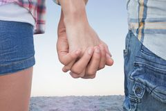 Composite image of couple in check shirts and denim holding hands Royalty Free Stock Photography