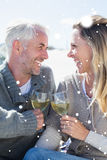 Composite image of couple enjoying white wine on picnic at the beach smiling at each other Stock Images