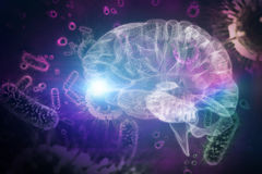 Composite image of 3d illustration of human brain Royalty Free Stock Images