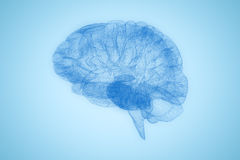 Composite image of 3d image of human brain. 3d image of human brain against blue background Stock Photo