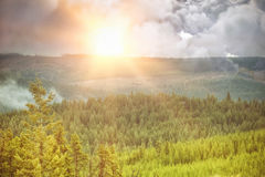 Composite image of digitally generated image of storm clouds. Digitally generated image of storm clouds  against scenic view of forest Stock Photography