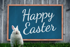 A Composite image of easter bunny Stock Photos